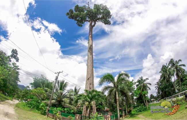 LLPDCPI Official Website - Agusan del Sur Tourist Spots